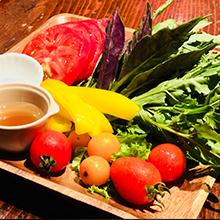 採れたて野菜サラダ
